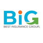 http://www.bestinsurancegroup.net